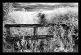 Old Fence by JQ, Photography->Landscape gallery