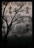 Dark Hour by jesouris, Photography->Landscape gallery