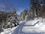 Ready for cross-country skiing? by ppigeon, Photography->Mountains gallery