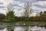 Wishful Thinking by Jimbobedsel, photography->shorelines gallery