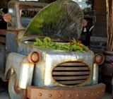Truck Garden! by trixxie17, photography->still life gallery