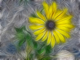 Colorado Yellow Petals reworked by Betheena, Abstract->Fractal gallery