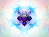 Petals by nmsmith, Abstract->Fractal gallery