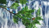Birdsnest Falls by Akeraios, computer->landscape gallery