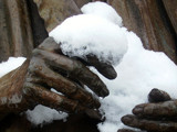 Eleanor's Hands by Jims, Photography->Sculpture gallery