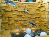 Recycled Penguins by Pistos, photography->still life gallery