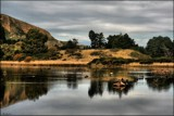 Duck Haven by LynEve, photography->landscape gallery