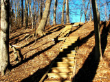 stairway to heaven by kiciaczek, Photography->Landscape gallery