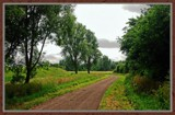 Walcheren Country Roads & Paths 15 by corngrowth, Photography->Landscape gallery