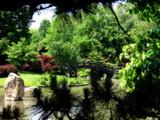 MBG - Japanese Garden II by Hottrockin, Photography->Landscape gallery