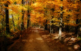 Goldenpath Too by casechaser, photography->landscape gallery