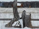 WINTER SEASON by picardroe, photography->general gallery