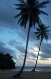 Playa Rincon by Nanaina, photography->shorelines gallery
