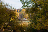 Glimpse of fall by Pistos, photography->general gallery