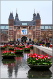 Amsterdam Tulip Festival 08 by corngrowth, photography->city gallery