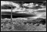 Desert Sky by snapshooter87, photography->landscape gallery