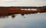 bridge to the sea by solita17, Photography->Shorelines gallery