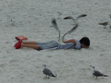 Friendly Seagulls by bcbird, Photography->People gallery
