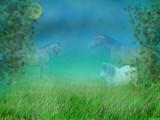 Summernight dreams by MarianaEwa, Contests->Dreams gallery