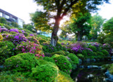 Japanese shrine garden by postaldude66, photography->gardens gallery