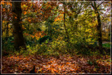 Mother Nature's Fall 'Painting' 1 by corngrowth, photography->nature gallery