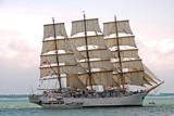 Zeeland Maritime (32), Dar Mlodziezy sails outward bound by corngrowth, Photography->Boats gallery