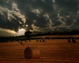 Golden Bales by LANJOCKEY, Photography->Landscape gallery