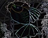 Neon Fish by jojomercury, photography->manipulation gallery