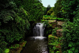 Jesmond Dene 3 by biffobear, photography->waterfalls gallery