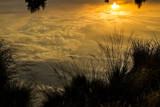 Golden Mirror by japio, photography->landscape gallery