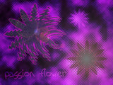Passion Flower by smoosh, abstract gallery