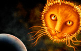 Suncat by Tootles, illustrations->digital gallery