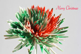 Holiday Celebration!*!*!*** by jerseygurl, photography->flowers gallery