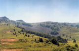 Ski Center in Summer by koca, photography->mountains gallery