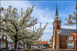 Sleepy Village Square by corngrowth, photography->flowers gallery