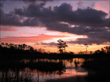 Marsh Sunrise by allisontaylor, Photography->Sunset/Rise gallery