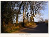 shine on... by fogz, Photography->Landscape gallery