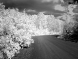 Mountian Road IR photo by coloradonic, Photography->Landscape gallery