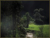 Fern Hill (After Dylan Thomas) by Pjsee16, photography->landscape gallery