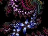 Petal Medley by Katz, Abstract->Fractal gallery