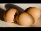 eggs by kodo34, Photography->Still life gallery