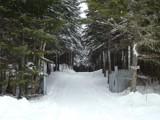 Winter Season 4 by picardroe, photography->landscape gallery