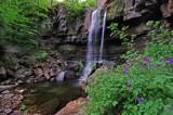 Ashgill Awakening by biffobear, Photography->Waterfalls gallery