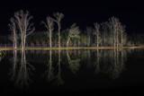 Pond Mirror by Mvillian, photography->landscape gallery