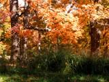 Full Monty by jojomercury, Photography->Landscape gallery