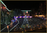 Christmas Lights by LynEve, holidays->christmas gallery