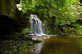 West Burton Flow 2 by biffobear, photography->waterfalls gallery