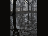 Reflecting Puddle by Eventualyeti, Photography->Shorelines gallery