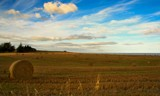Harvest by LynEve, photography->landscape gallery