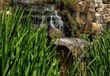 Watergate Falls by biffobear, photography->waterfalls gallery